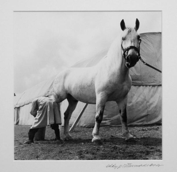 Tentoonstelling Eddy de Boer juni 2020 -- Enkele foto's met mooie compositie